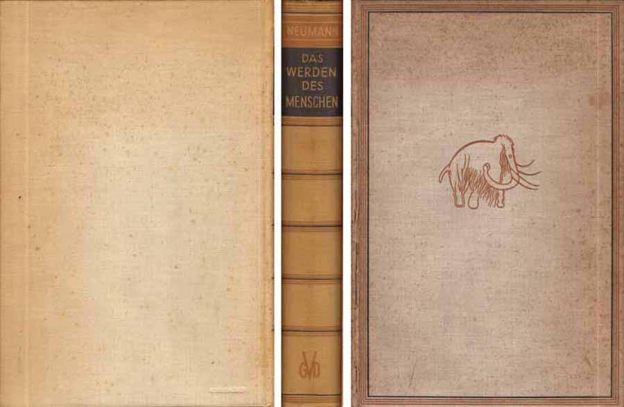 Buch von Carl W. Neumann - Das Werden des Menschen und der Kultur - 1933 bei Hood.de